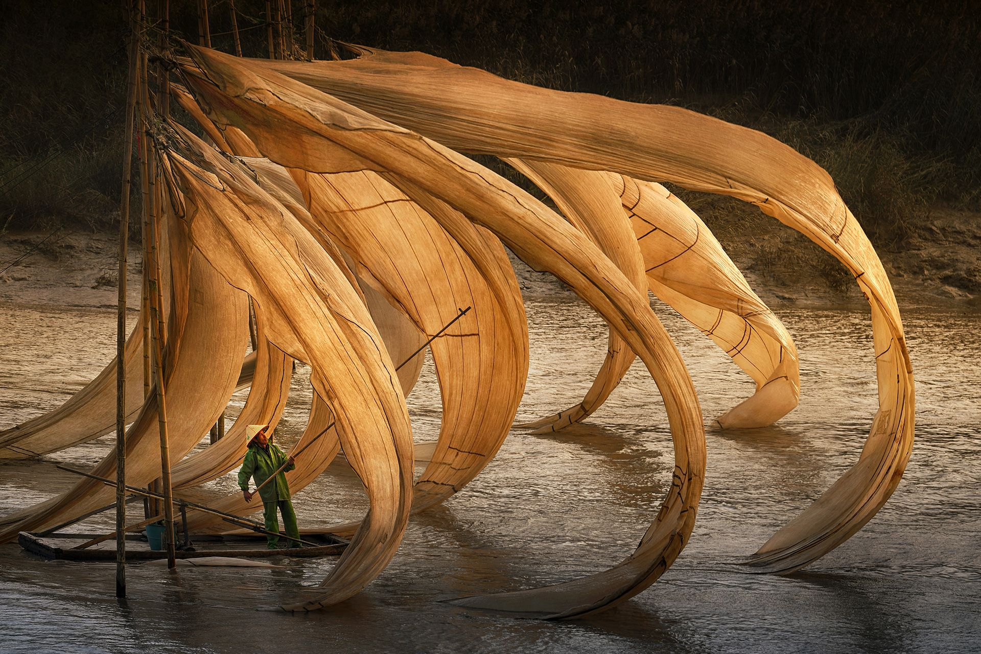 Flying Fishing Nest