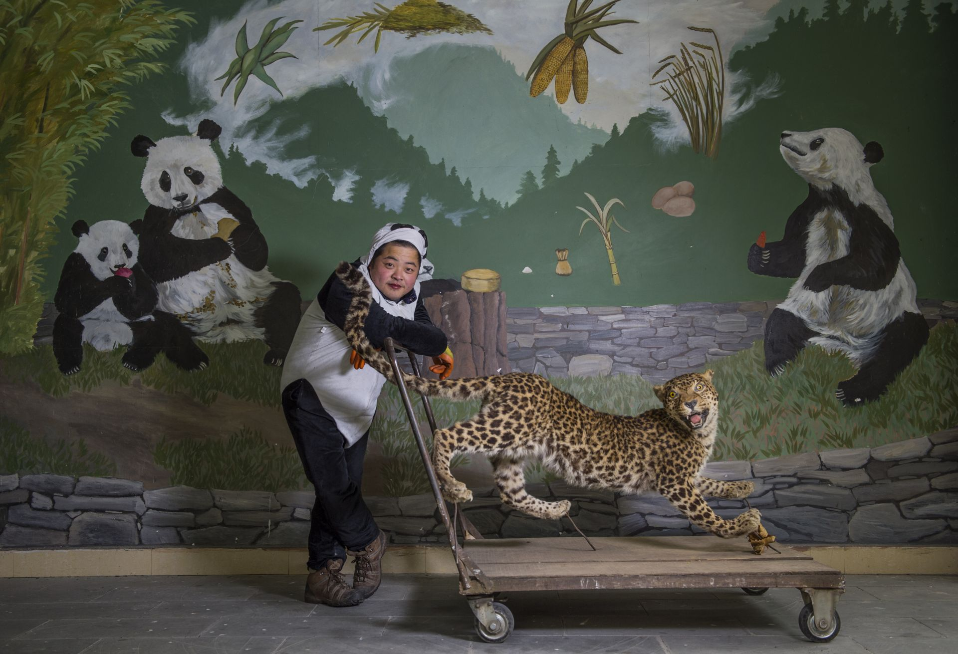 The Leopard Keeper