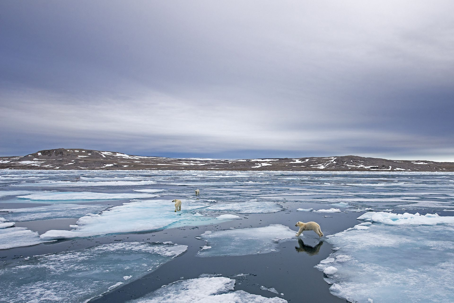 Importance of Floating Ice