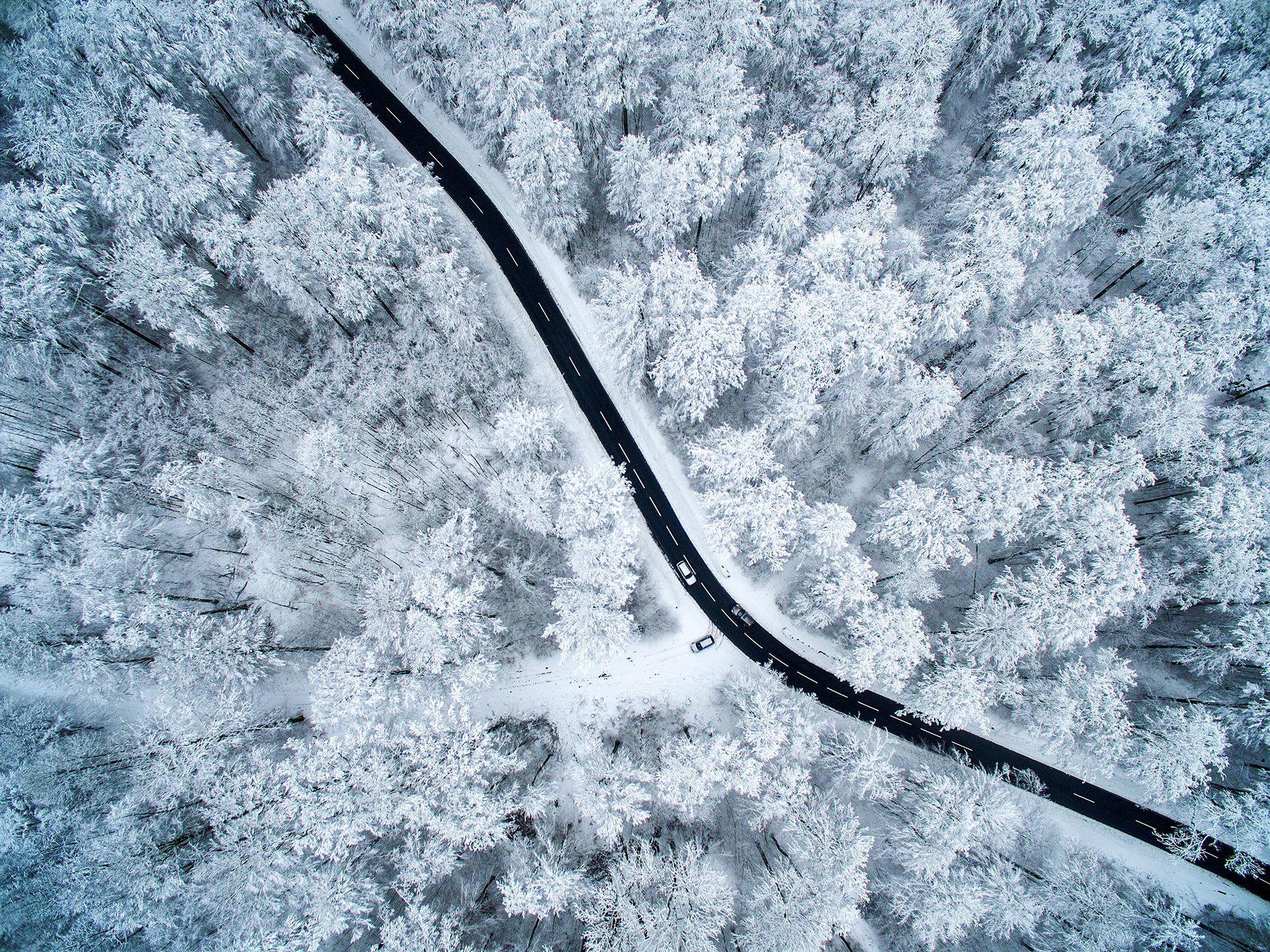 Winter Idyll in Everyday Life