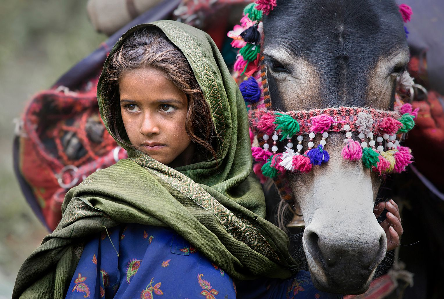 The girl from Kashmir