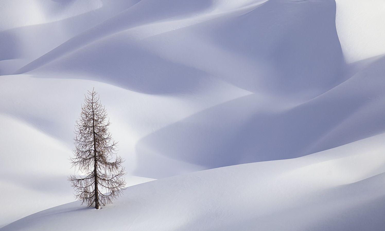 The snow powder