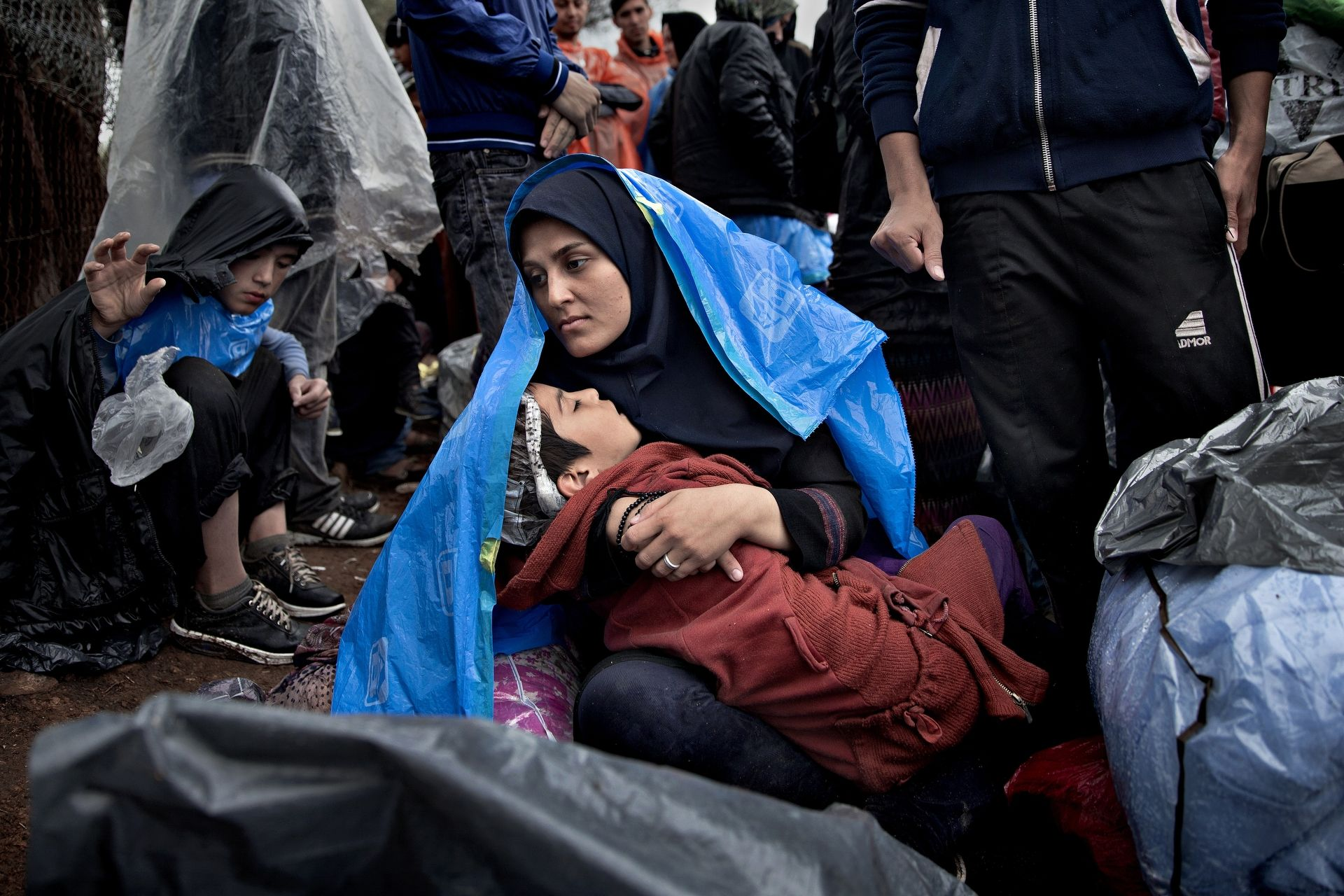 Refugee stream - 4