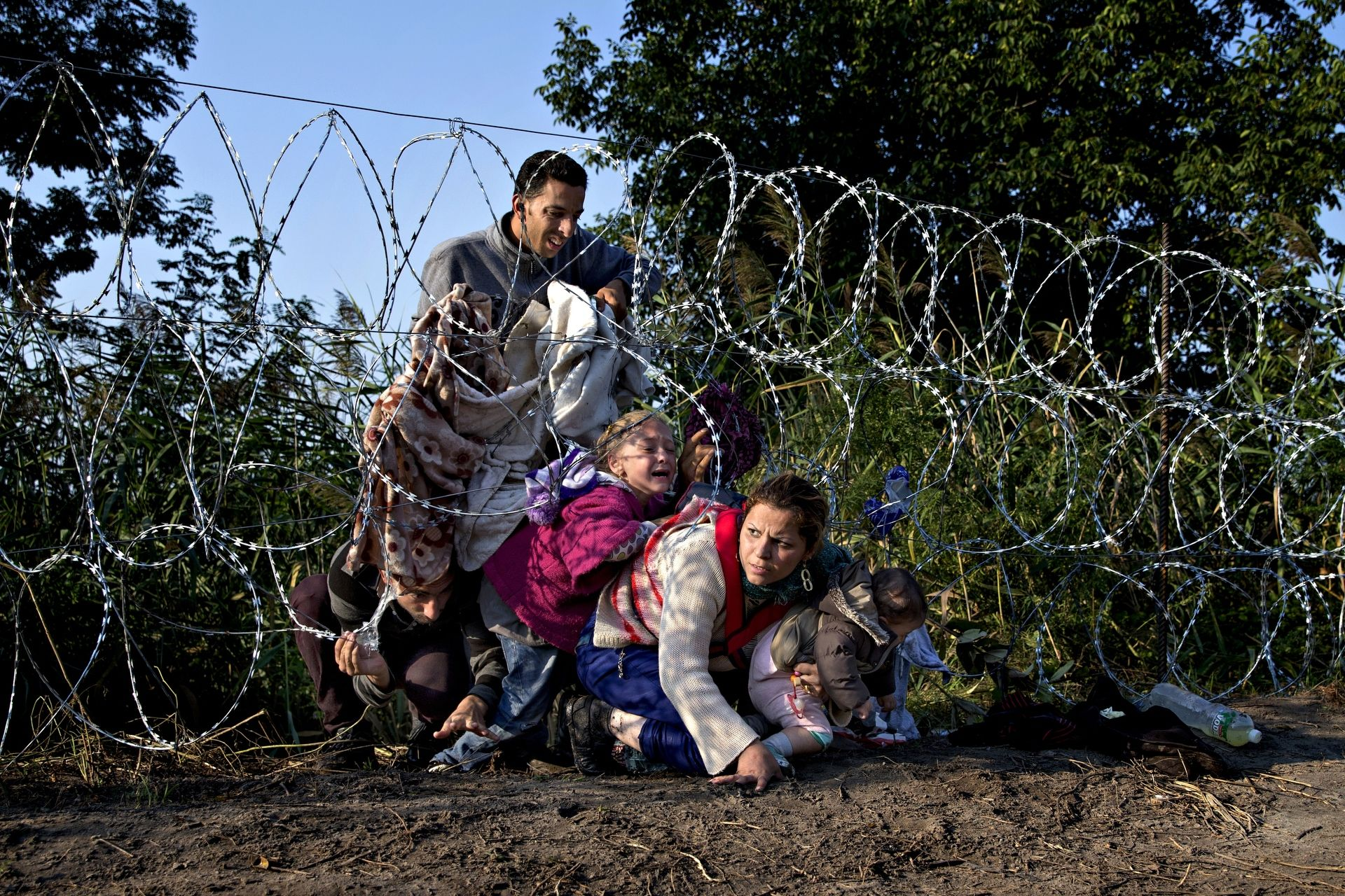 Refugee stream - 7