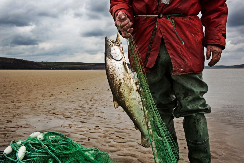 Seine net fisherman